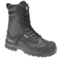 himalayan-hybrid-s3-boot-2